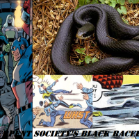 Wish-List: Black Racer (of Marvel's Serpent Society) (v2.2)