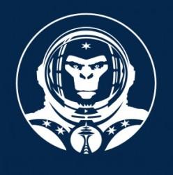 space_monkey-295x300